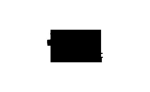 Vlaams